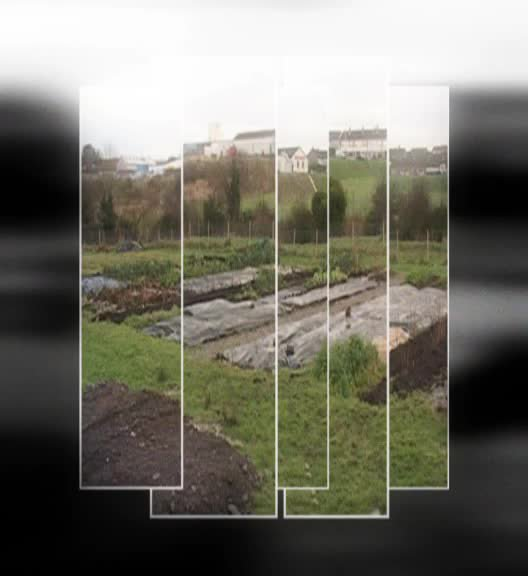 PEACE II: Fermanagh Leitrim Organic Co-operation Programme